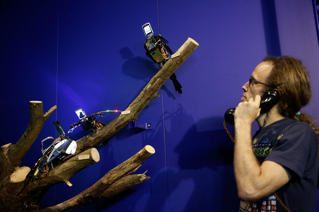 "Unwanted phones recreated as interactive birds, part of ""Escape III"" by Anthony Goh and Neil Mendoza seen on display at the Barbican's Digital Revolution exhibition on July 2, 2014 in London, England. The exhibition brings together artists, designers, film makers, musicians and architects who push the boundaries of creativity that digitial technology can offer, and runs from July 3 until September 14, 2014.  (Photo by Matthew Lloyd/Getty Images for Barbican Art Gallery)"