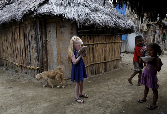 "Delyane Avila, 6, who is part of the albino or ""Children of the Moon"" group in the Guna Yala indigenous community, draws on her notebook next to neighbors on Ailigandi Island in the Guna Yala region, Panama May 4, 2015. Alabaster-skinned people born on a sun-scorched group of islands off Panama's Caribbean coast are venerated as Children of the Moon. Albinos make up between 5 and 10 percent of the roughly 80,000 indigenous Gunas who live on the mainland of the Guna Yala region and its islands. (Photo by Carlos Jasso/Reuters)"