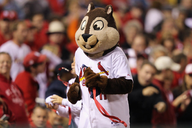 The St. Louis Cardinals Rally Squirrel runs around the stadium against the Milwaukee Brewers during Game Five of the National League Championship Series at Busch Stadium on October 14, 2011 in St Louis, Missouri. (Photo by Jamie Squire/Getty Images)