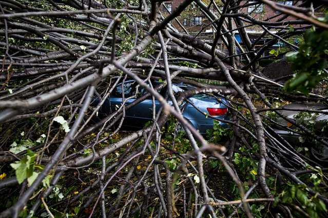 A car is crushed beneath a fallen tree on East Broadway in Manhattan's Lower East Side neighborhood. (Photo by John Minchillo/Associated Press)