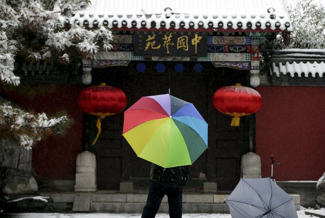 A resident holds an umbrella in the snow at a park in central Beijing, China, November 22, 2015. (Photo by Jason Lee/Reuters)