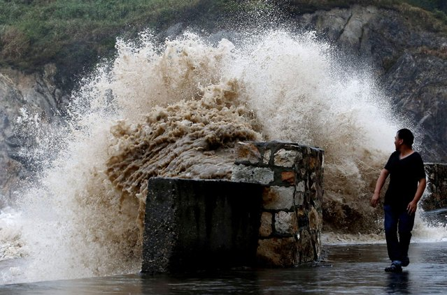 A man looks back at a surging wave as Typhoon Trami approaches China, in Wenling, Zhejiang province, August 21, 2013. Trami, the 12th typhoon to hit China this year, struck east China's Fujian Province on Thursday, local meteorological authorities said. Picture taken August 21, 2013. (Photo by Reuters/Stringer)