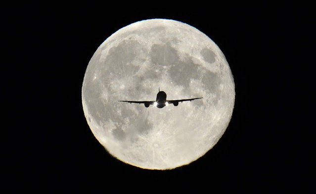 """A passenger aircraft, with the full """"Harvest Moon"""" seen behind, makes its final approach to landing at Heathrow Airport in London, on September 19, 2013. The Harvest Moon is a name for the full moon that is closest to the autumn equinox, and at a time when farmers would traditionally be harvesting crops. (Photo by Toby Melville/Reuters)"""