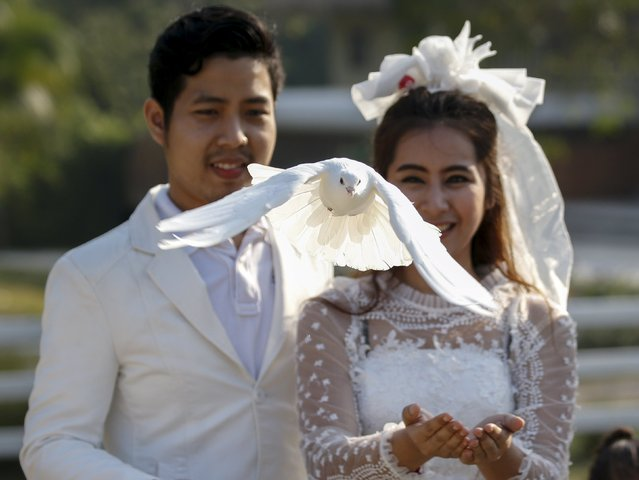 Groom Kittinant Suwansiri, 29, and his bride Jintara Promchat, 28, release a pigeon during a wedding ceremony ahead of Valentine's Day at a resort in Ratchaburi province, Thailand, February 13, 2016. (Photo by Athit Perawongmetha/Reuters)