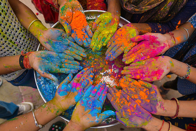 A group of girls cover their hands in coloured paint in Pushkar, a town bordering the Thar Desert in the north-eastern state of Rajasthan, India on March 19, 2019. This event is popularly named as Chaddimar Holi where women beat men with little sticks as per Traditional culture of Gokul, Gokul is the birth place of Hindu Lord Krishna who used to play Holi with his friends like this way as per local belief. (Photo by Shaukat Ahmed/Pacific Press via ZUMA Wire/Rex Features/Shutterstock)