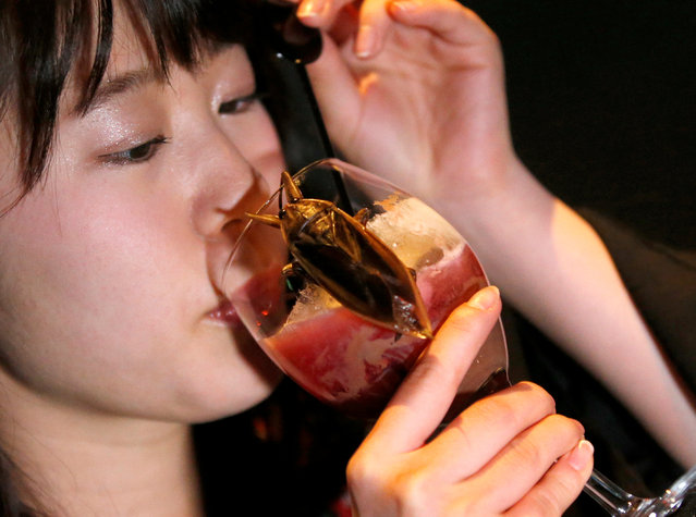 A woman drinks a cocktail with whipped cream containing juice of water bugs at a bar in downtown Tokyo, Japan, February 12, 2017. (Photo by Toru Hanai/Reuters)