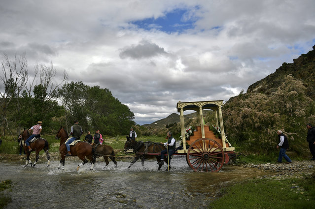 "Devotees of the Rocio Virgin cross a river as they take part in the ""Romeria de El Rocio"" in the countryside outside Fitero, northern Spain, Saturday, May 25, 2019. Fitero celebrates its 19th edition of the pilgrimage of the Virgin El Rocio, a small carved wooden statue of the Virgin and Child, of which the only carved parts are the face, hands, and the Christ child, with dances and procession. (Photo by Alvaro Barrientos/AP Photo)"