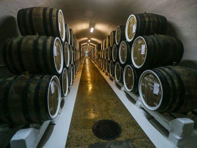 Barrels lay in a wine cellar of 'Massandra' wine factory. (Photo by Sergei Ilnitsky/EPA)