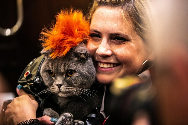 Thunder Folds Cat, dressed inspired by Funk, is seen at backstage before the Algonquin Hotel's Annual Cat Fashion Show in the Manhattan borough of New York City, New York, U.S., August 1, 2019. (Photo by Jeenah Moon/Reuters)