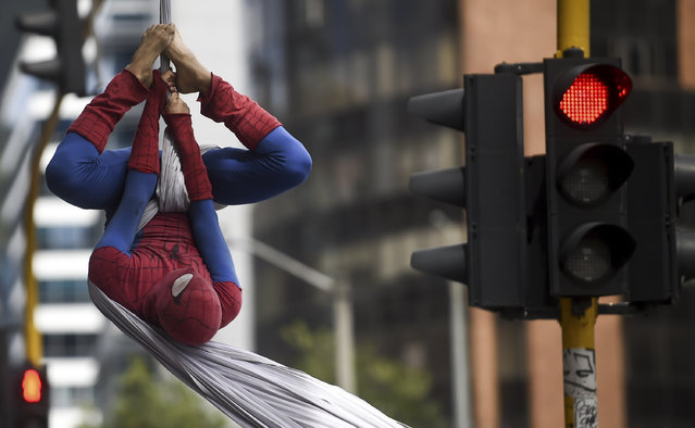 "Colombian Jahn Fredy Duque, dressed as superhero ""Spiderman"", performs on the streets in Bogota, Colombia on April 24, 2017. (Photo by Raul Arboleda/AFP Photo)"