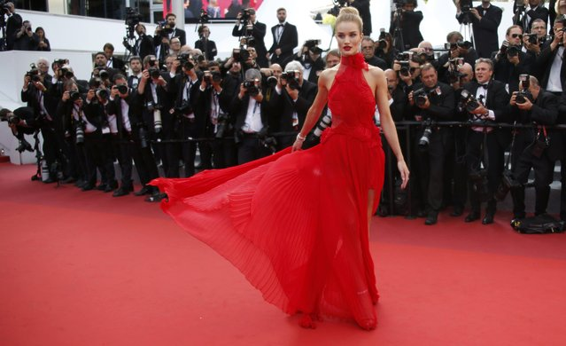 """Model Rosie Huntington-Whiteley poses on the red carpet as she arrives for the screening of the film """"La fille inconnue"""" (The Unknown Girl) in competition at the 69th Cannes Film Festival in Cannes, France, May 18, 2016. (Photo by Jean-Paul Pelissier/Reuters)"""