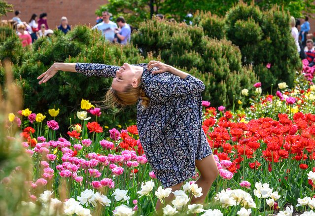 A young woman dances in a field of tulips in a park in central Moscow on May 10, 2019. Moscow enjoys a heatwave while the rest of Europe struggles with cold weather. (Photo by Mladen Antonov/AFP Photo)