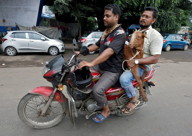 Men carry a goat on a motorcycle after it was purchased from a livestock market on the eve of the Eid al-Adha festival in Kolkata, India September 1, 2017. (Photo by Rupak De Chowdhuri/Reuters)