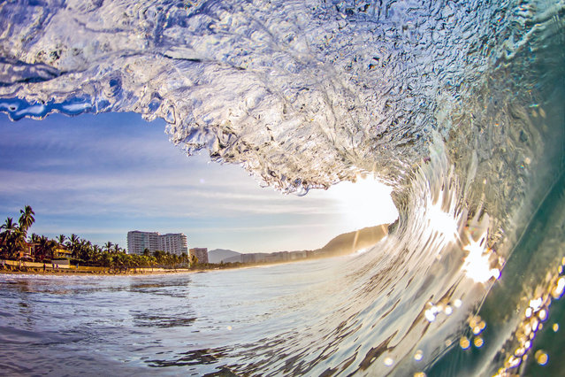 Mexico Wave. (Photo by Kenji Croman/Caters News)