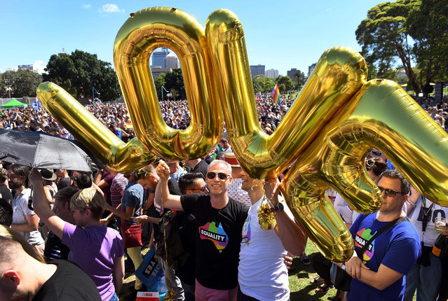 "Supporters of the same-s*x marriage ""Yes"" vote gather to celebrate the announcement in a Sydney park on November 15, 2017. Australians voted in favour of allowing same-s*x couples to marry, official results showed on November 15, sending the task of legalising marriage equality to a deeply divided parliament. (Photo by William West/AFP Photo)"