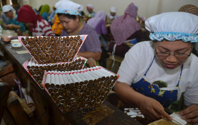 This picture taken in Malang, East Java on August 23, 2016 shows Indonesian women labourers rolling clove cigarettes at a factory in Malang. (Photo by Aman Rochman/AFP Photo)
