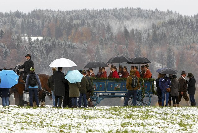 Farmers' wives dressed in traditional Bavarian costumes ride in a wooden carriage on the way to the chapel on the Kalvarienberg in Bad Toelz, during the Leonhard procession November 6, 2014. (Photo by Michaela Rehle/Reuters)