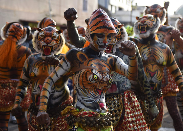 """An Indian performer painted as a tiger takes part in the """"Pulikali"""", or Tiger Dance, in Thrissur on September 17, 2016. The folk-art event is held every year in the town during the """"Onam"""" festival. (Photo by Arun Sankar/AFP Photo)"""