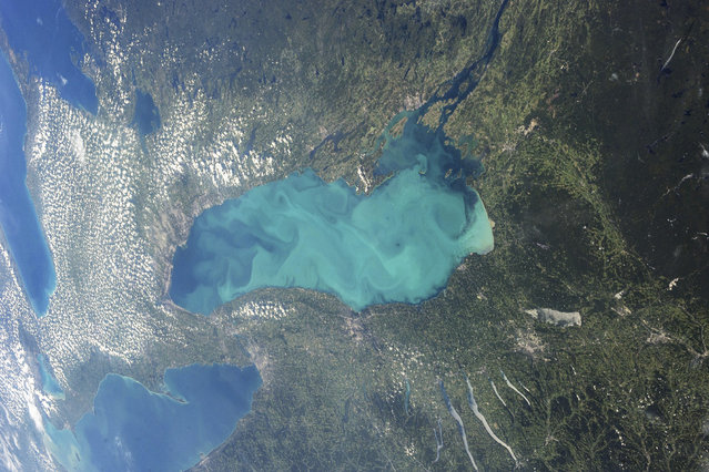 Late summer plankton blooms across much of Lake Ontario. (Photo by Reuters/NASA)