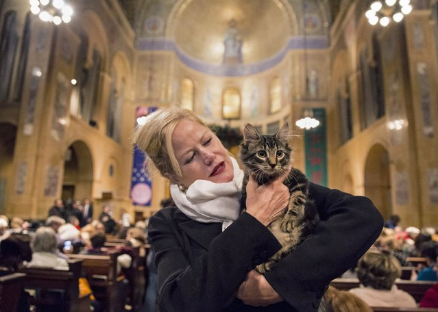 """An owner poses with her pet cat during the """"Blessing of the Animals"""" at the Christ Church United Methodist in Manhattan, New York December 7, 2014. (Photo by Elizabeth Shafiroff/Reuters)"""