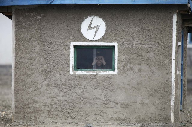 """A North Korean soldier looks out of the window of a guard tower, on the banks of Yalu River, about 100 km (62 miles) from the North Korean town of Sinuiju, opposite the Chinese border city of Dandong, April 16, 2013. North Korea issued new threats against South Korea on Tuesday, vowing """"sledge-hammer blows"""" of retaliation if South Korea did not apologise for anti-North Korean protests the previous day when the North was celebrating the birth of its founding leader. (Photo by Jacky Chen/Reuters)"""