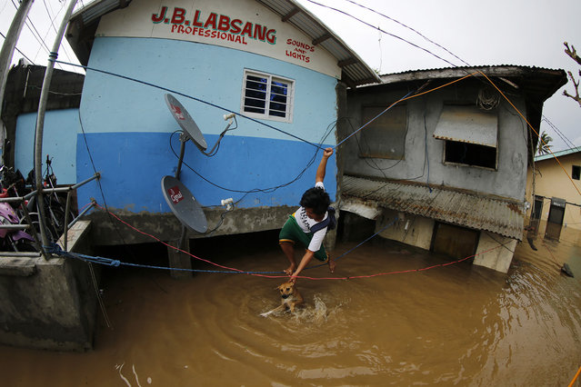 A Filipino typhoon victim crosses on a rope next to a flooded house in the typhoon-hit town of Gonzaga, Cagayan province, Philippines, October 20, 2016. Many houses, trees, and electric posts were destroyed after Super Typhoon Heima made landfall in the Northern Philippines. (Photo by Francis R. Malasig/EPA)