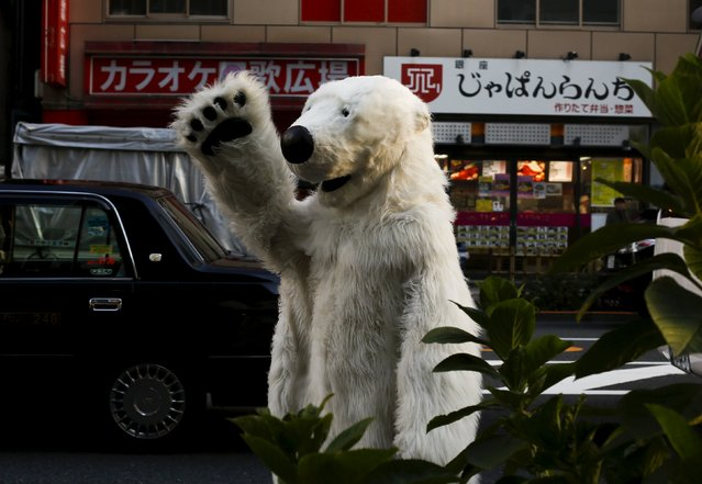 A man in a polar bear costumes walks through central Tokyo during a rally organised by environment protection groups ahead of the 2015 Paris Climate Conference, known as the COP21 summit, November 28, 2015. (Photo by Thomas Peter/Reuters)