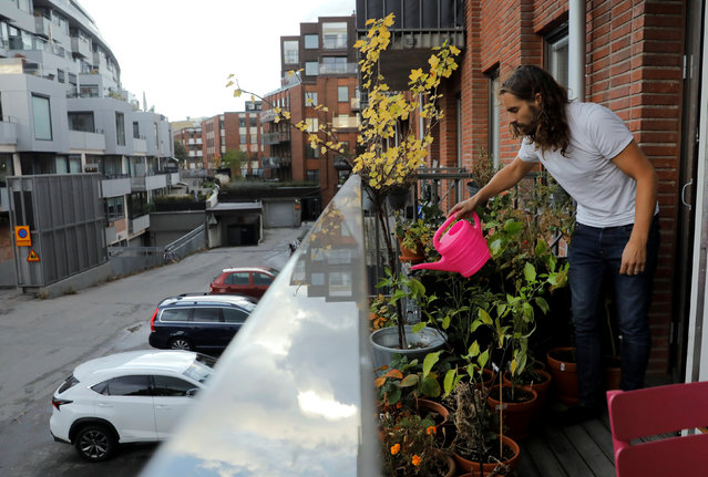 Daniel Jager waters the plants on the balcony of his apartment in Stockholm, Sweden, September 29, 2016. (Photo by Maxim Shemetov/Reuters)