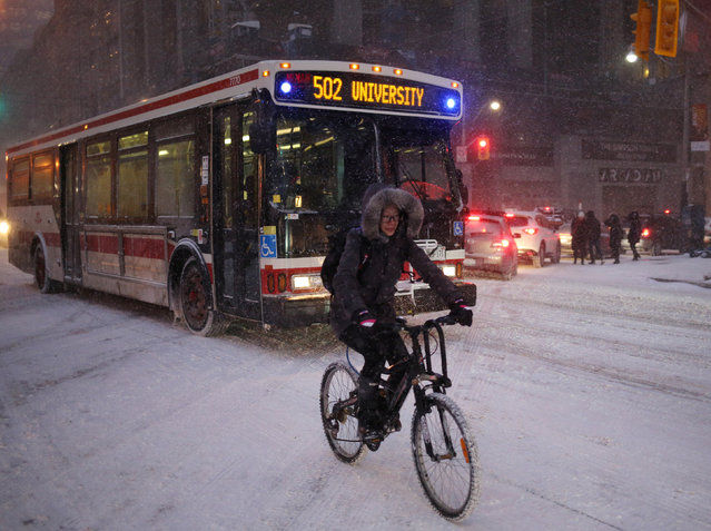 A cyclist commutes home during a snowstorm in Toronto, Ontario, Canada, December 15, 2016. (Photo by Chris Helgren/Reuters)