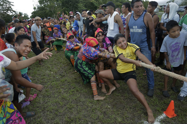 In this November 25, 2018 photo, Guna indigenous women compete in the tug-of-war during the second edition of the Panamanian indigenous games in Piriati, Panama. Indigenous people from the four most important ethnic groups in Panama participated for two days to select the athletes that will represent Panama in the upcoming World Indigenous Peoples Games. (Photo by Arnulfo Franco/AP Photo)