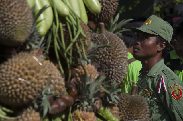 A security guards near durians during festival durian on the northern slopes of Mount Arjuna in East Java. (Photo by Sigit Pamungkas/JG Photo)