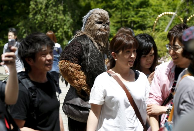 A cosplayer dressed up as Star Wars character Chewbacca takes part in a Star Wars Day fan event in Tokyo May 4, 2015. (Photo by Toru Hanai/Reuters)
