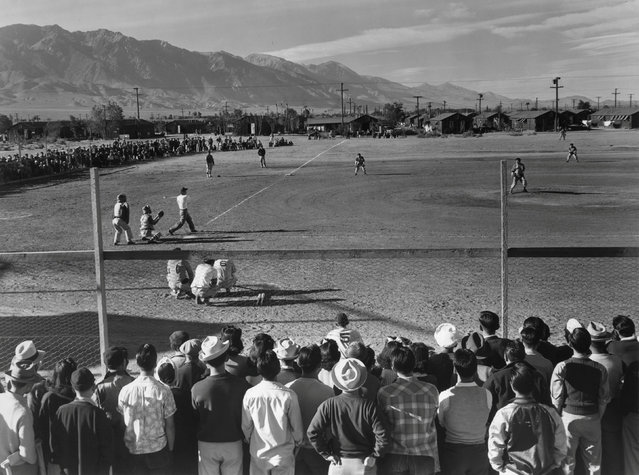 Spectators watch a baseball game at the Manzanar War Relocation Center in California, in this 1943 handout photo. (Photo by Courtesy Ansel Adams/Library of Congress, Prints and Photographs Division/Reuters)