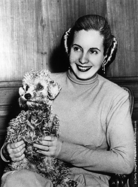 Former actress and wife of the Argentinian president, (Maria) Eva Duarte Peron (1919 - 1952), popularly known as 'Evita', holding her pet dog at her home in Olivos, a suburb of Buenos Aires
