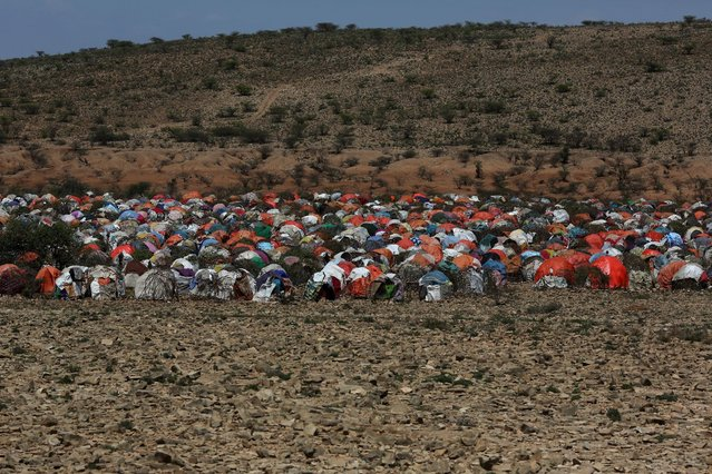 An internally displaced people camp is seen on the outskirts of the town of Qol Ujeed, on the border with Ethiopia, Somaliland April 17, 2016. (Photo by Siegfried Modola/Reuters)