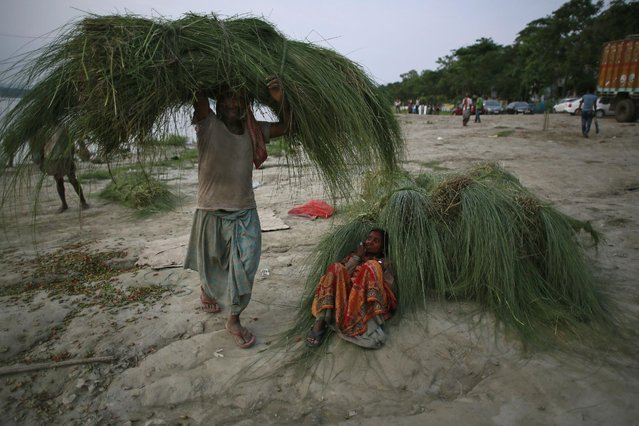 An Indian man carries grass for cattle as a woman takes rest on the banks of the River Brahmaputra in Gauhati, India, Thursday, May 21, 2015. Brahmaputra is one of Asia's largest rivers, which passes through China's Tibet region, India and Bangladesh before converging into the Bay of Bengal. (Photo by Anupam Nath/AP Photo)