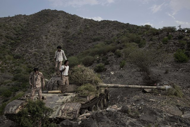 In this Monday, August 5, 2019 photo, fighters from a militia known as the Security Belt, that is funded and armed by the United Arab Emirates, stand on a tank camouflaged with brush, at the Gabhet Hajr frontline with Houthi rebels, in Yemen's Dhale province. Yemen's civil war has been deadlocked for months, with neither side making major gains. At one of the most active front lines, militiamen backed by the Saudi-led coalition are dug in, exchanging shelling every night with Iranian-allied Houthi rebels only a few hundred meters away. (Photo by Nariman El-Mofty/AP Photo)