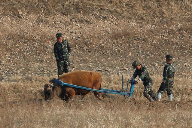 North Korean soldiers plow the land with an ox from the North Korean side of the Yalu River, as a Chinese boat sails by with tourists, near Sinuiju in North Korea and Dandong in China's Liaoning Province, April 13, 2017. (Photo by Aly Song/Reuters)
