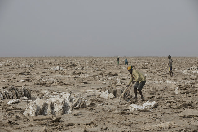 Men mine salt from the Danakil Depression on 28 March 2017, in Afar, Ethiopia. (Photo by Zacharias Abubeker/AFP Photo)