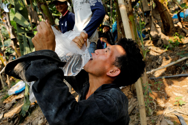 A worker pauses to drink water while harvesting at a banana plantation operated by a Chinese company in the province of Bokeo in Laos April 25, 2017. (Photo by Jorge Silva/Reuters)