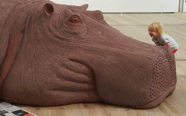 Three year old Nina Condon looks at Hope Hippo part of the Animalesque/Art Across Species and Beings Exhibition at the Baltic Centre for Contemporary Art in Gateshead, England on November 20, 2019. (Photo by Owen Humphreys/PA Images via Getty Images)