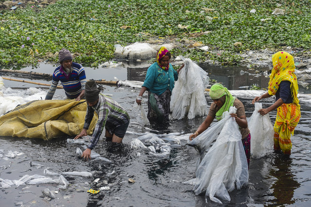 Workers scrub plastic bag used to carry industrial chemicals in the Buriganga river in Dhaka on January 9, 2020. (Photo by Munir Uz Zaman/AFP Photo)