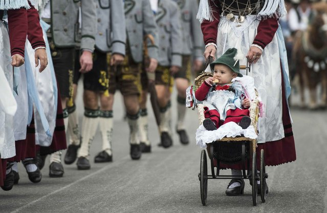 A child dressed in traditional Bavarian clothes is taken along the Oktoberfest parade in Munich, Germany, September 20, 2015. (Photo by Lukas Barth/Reuters)
