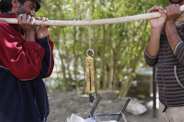 Porters check the weight of a load during a K2 Base Camp trek near the resting point of Paju in the Karakoram mountain range in Pakistan September 10, 2014. (Photo by Wolfgang Rattay/Reuters)