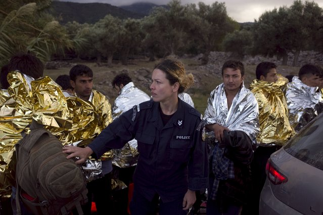 A Greek police officer (C) takes care of Afghan refugees wrapped with thermal blankets following their arrival on an overcrowded dinghy on the Greek island of Lesbos, after crossing in rough seas from the Turkish coast, October 2, 2015. (Photo by Dimitris Michalakis/Reuters)