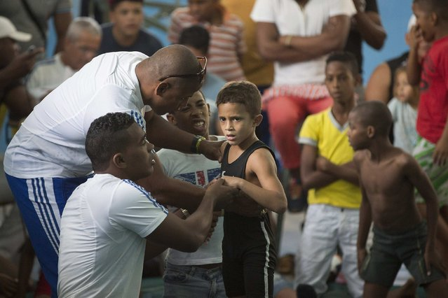 A child speaks to his coaches during a local wrestling tournament in Havana, November 15, 2014. (Photo by Alexandre Meneghini/Reuters)
