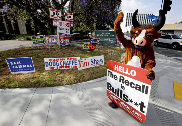 In this May 30, 2018 photo, a person in a bull suit, standing amid a plethora of campaign signs, urges voters to reject the recall campaign launched against Democratic California state Senator Josh Newman, on a street in Fullerton, Calif. Newman in fight for his political life as Republicans seek to oust him over his vote, along with 80 other legislators, to raise California's gas tax. (Photo by Chris Carlson/AP Photo)