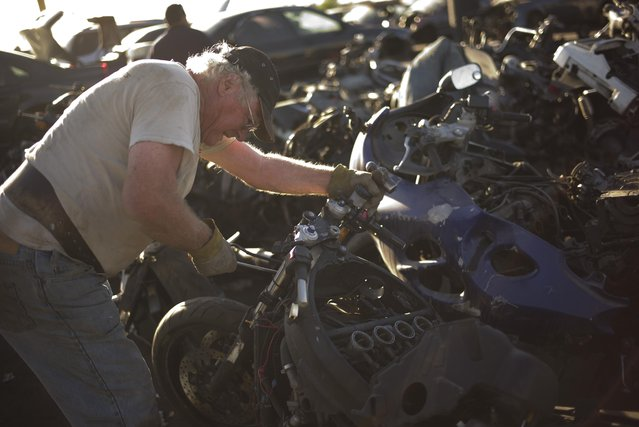 In this Wednesday, November 11, 2015 photo, Jack Weimer pulls a part from a junk motorcycle at Aadlen Brothers Auto Wrecking, also known as U Pick Parts, in the Sun Valley section of Los Angeles. (Photo by Jae C. Hong/AP Photo)