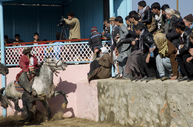 An Afghan horse rider tries to keep the goat during a friendly buzkashi match on the outskirts of Kabul, Afghanistan, Thursday, January 15, 2015. (Photo by Massoud Hossaini/AP Photo)