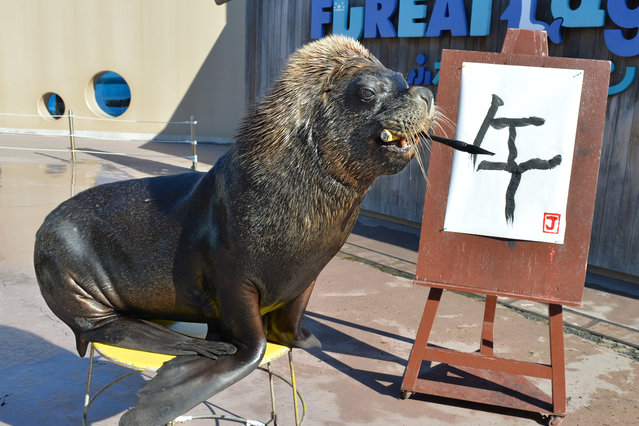 """Sea lion """"Jay"""" paints a Chinese character reading """"the horse"""" to practice his calligraphy as part of his New Year's Day attraction at the Hakkeijima Sea Paradise aquarium in Yokohama, suburban Tokyo on December 31, 2013. (Photo by Kazuhiro Nogikazuhiro/AFP Photo)"""